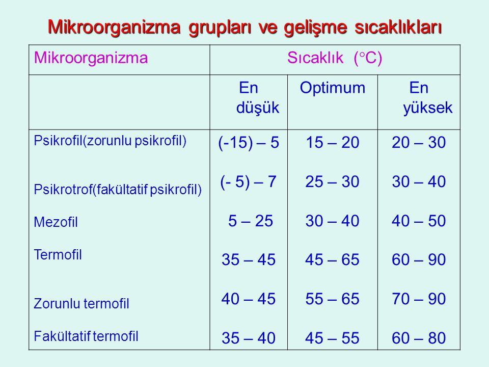 Mikroorganizma grupları ve gelişme sıcaklıkları
