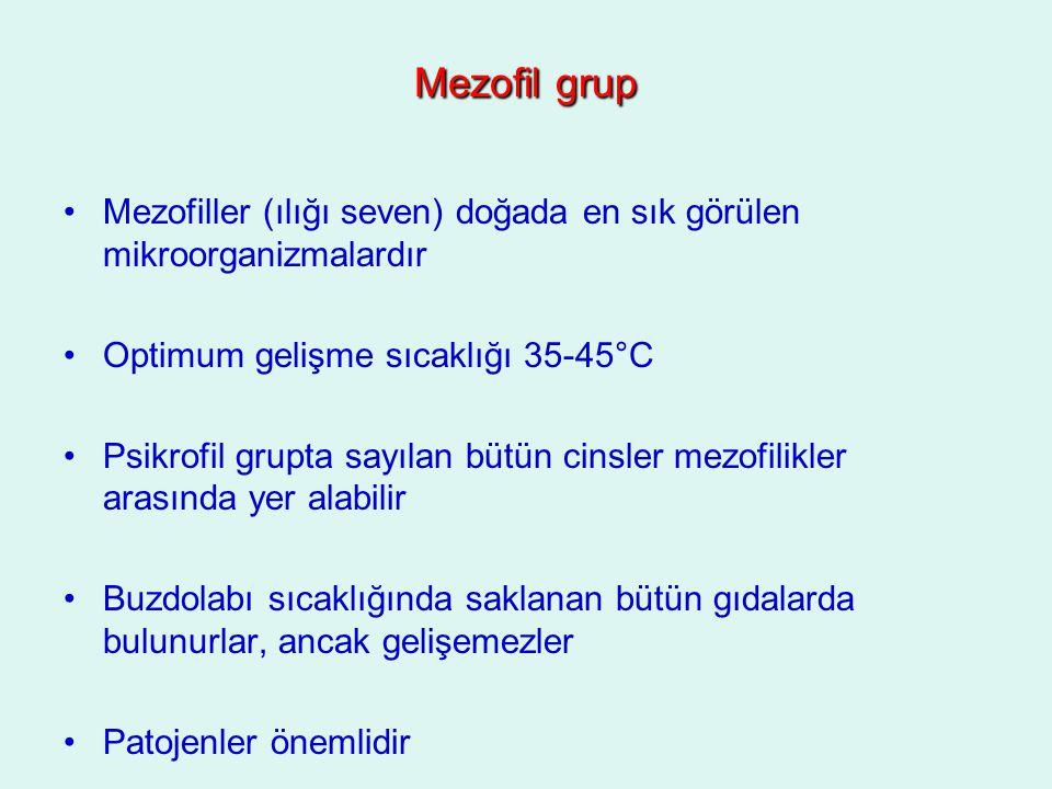 Mezofil grup Mezofiller (ılığı seven) doğada en sık görülen mikroorganizmalardır. Optimum gelişme sıcaklığı 35-45°C.