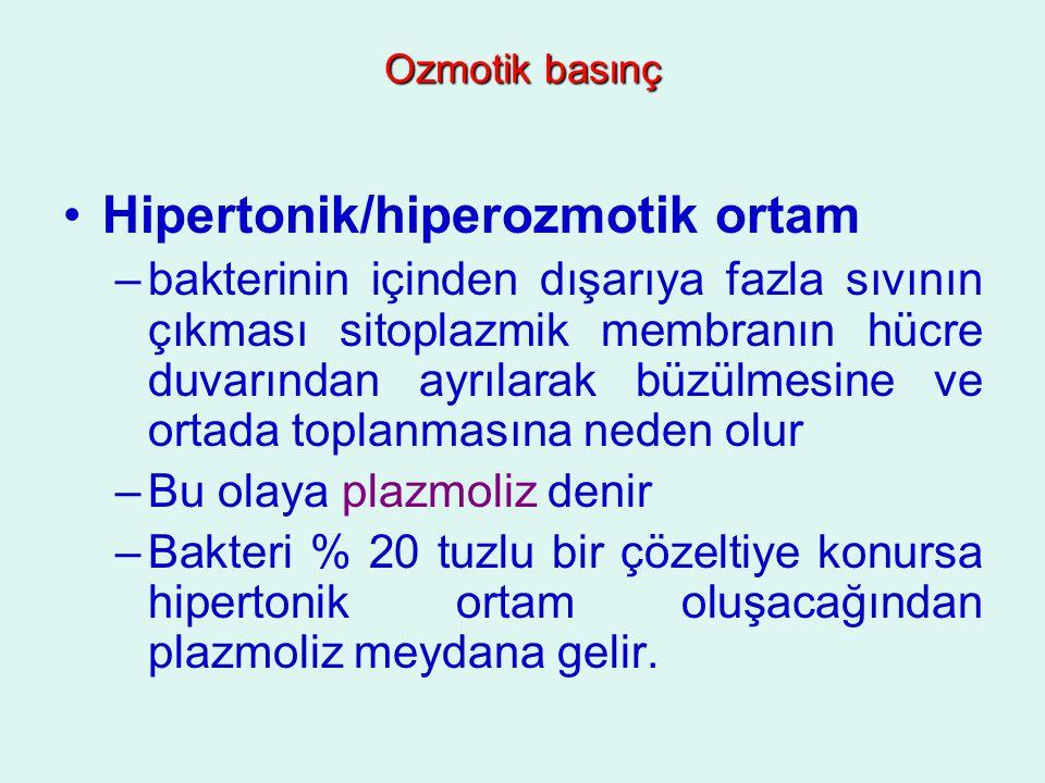 Hipertonik/hiperozmotik ortam