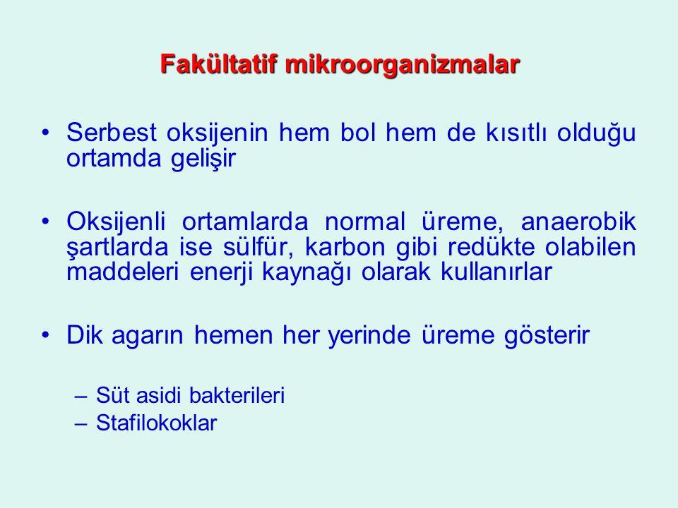 Fakültatif mikroorganizmalar