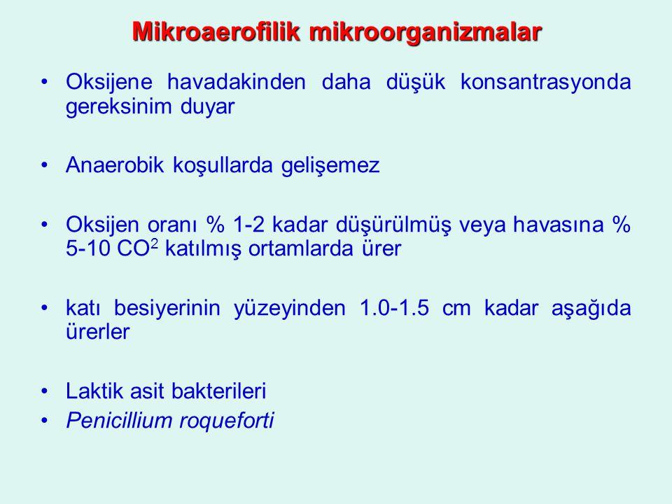 Mikroaerofilik mikroorganizmalar