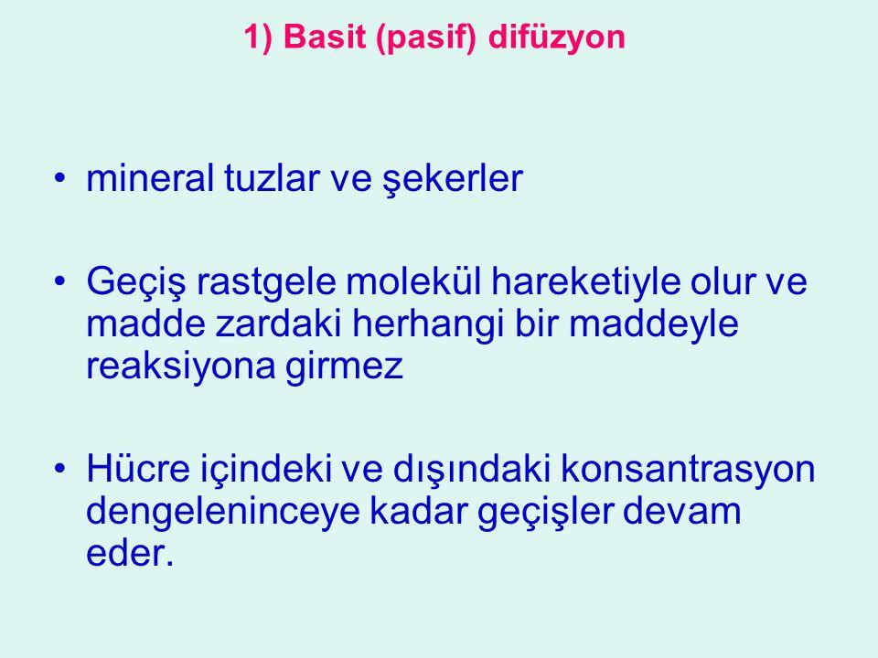 1) Basit (pasif) difüzyon