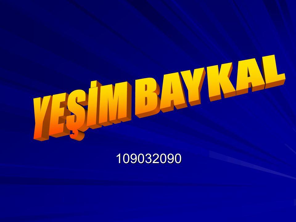 YEŞİM BAYKAL 109032090