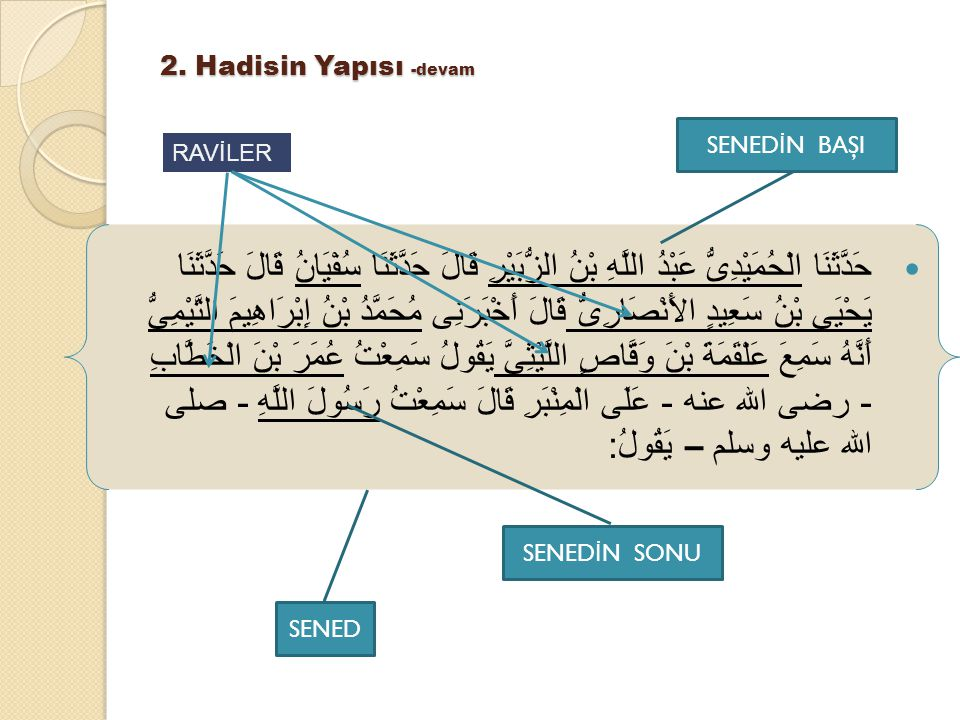 2. Hadisin Yapısı -devam SENEDİN BAŞI. RAVİLER.
