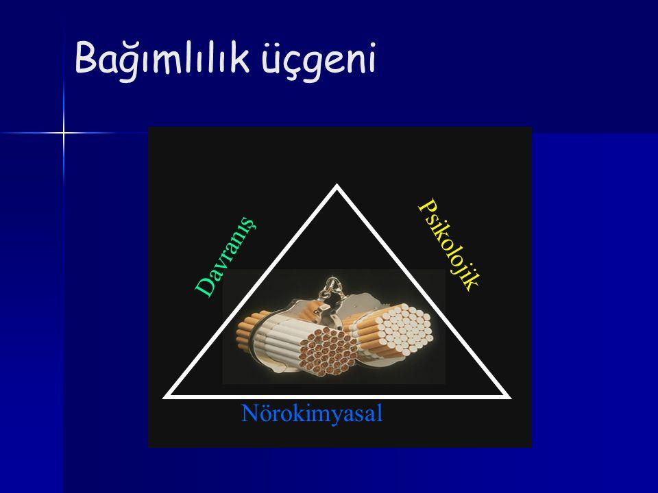 Bağımlılık üçgeni Nörokimyasal Davranış Psikolojik