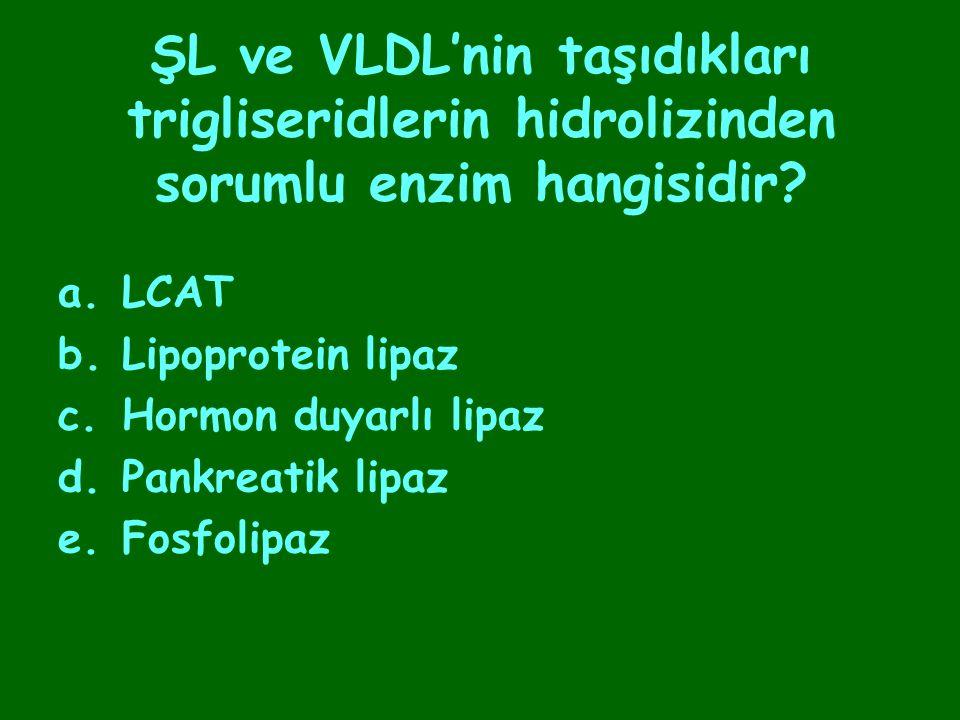 ŞL ve VLDL'nin taşıdıkları trigliseridlerin hidrolizinden sorumlu enzim hangisidir