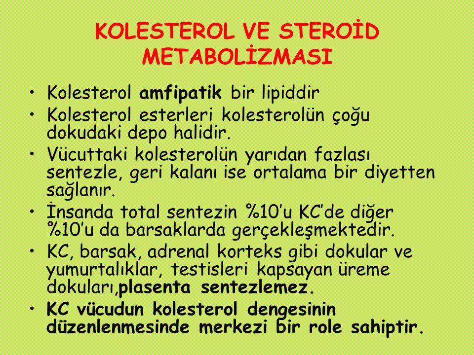 KOLESTEROL VE STEROİD METABOLİZMASI