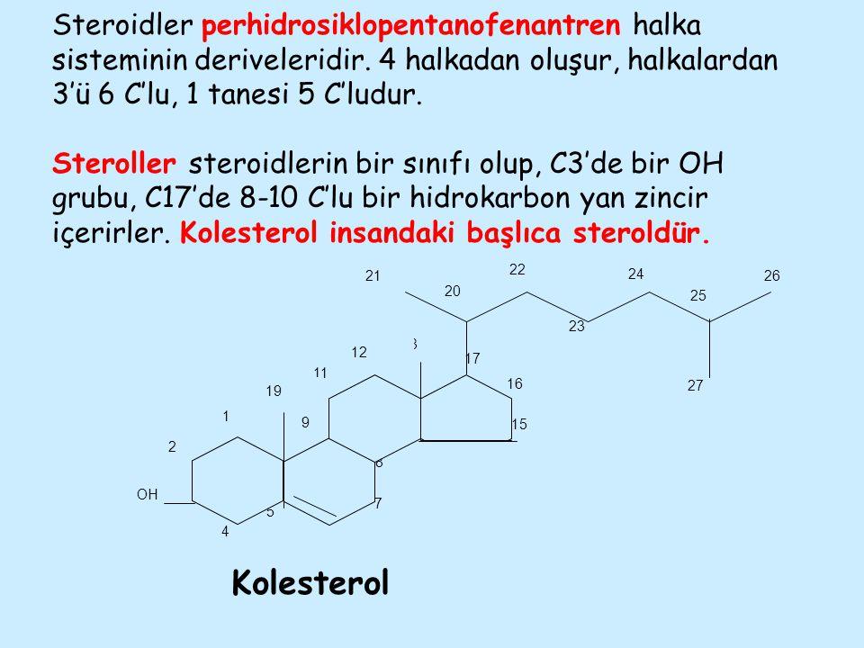Steroidler perhidrosiklopentanofenantren halka sisteminin deriveleridir. 4 halkadan oluşur, halkalardan 3'ü 6 C'lu, 1 tanesi 5 C'ludur. Steroller steroidlerin bir sınıfı olup, C3'de bir OH grubu, C17'de 8-10 C'lu bir hidrokarbon yan zincir içerirler. Kolesterol insandaki başlıca steroldür.