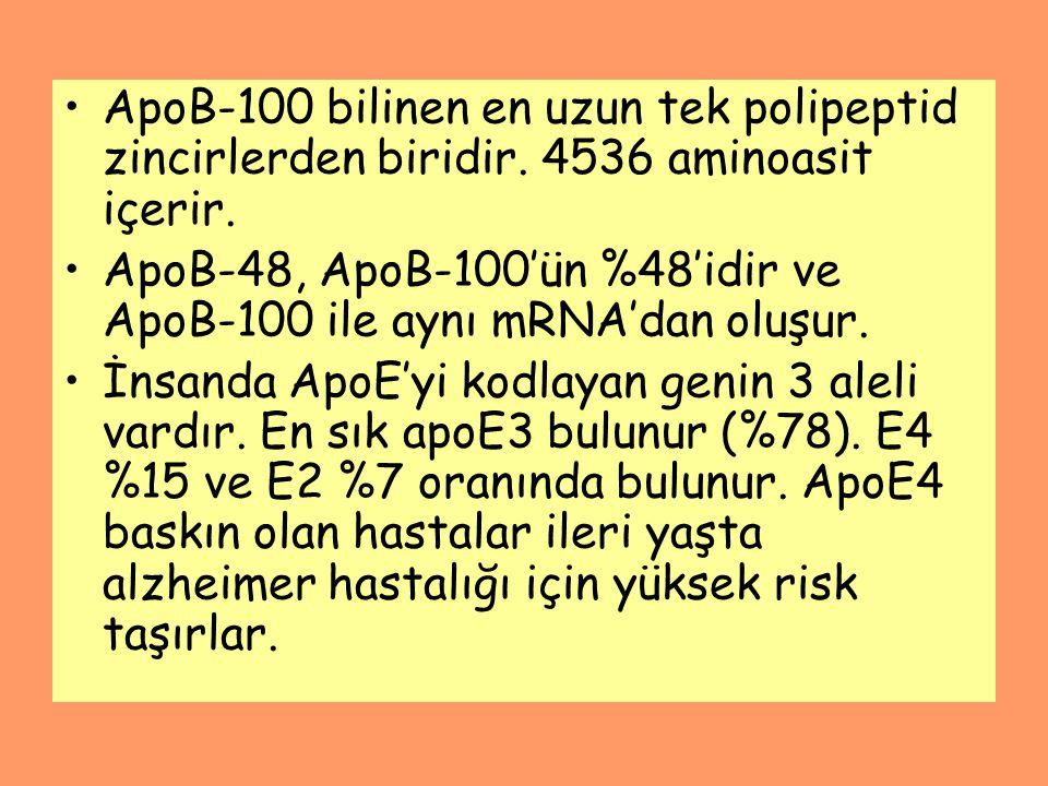 ApoB-100 bilinen en uzun tek polipeptid zincirlerden biridir
