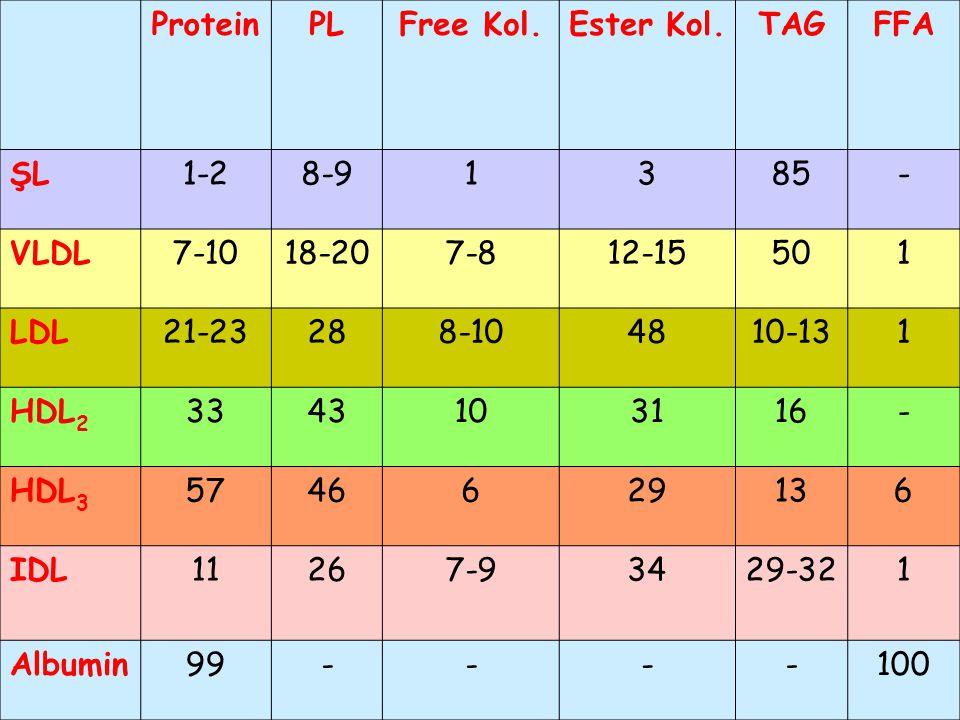Protein PL. Free Kol. Ester Kol. TAG. FFA. ŞL. 1-2. 8-9. 1. 3. 85. - VLDL. 7-10. 18-20.