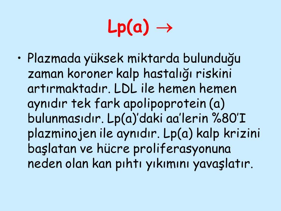 Lp(a) 