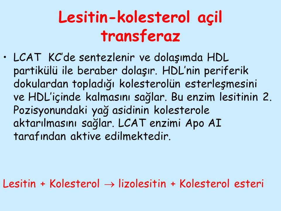 Lesitin-kolesterol açil transferaz