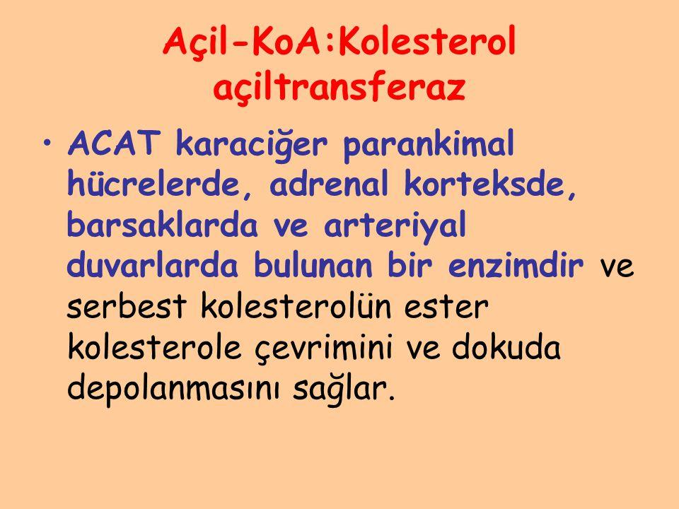 Açil-KoA:Kolesterol açiltransferaz