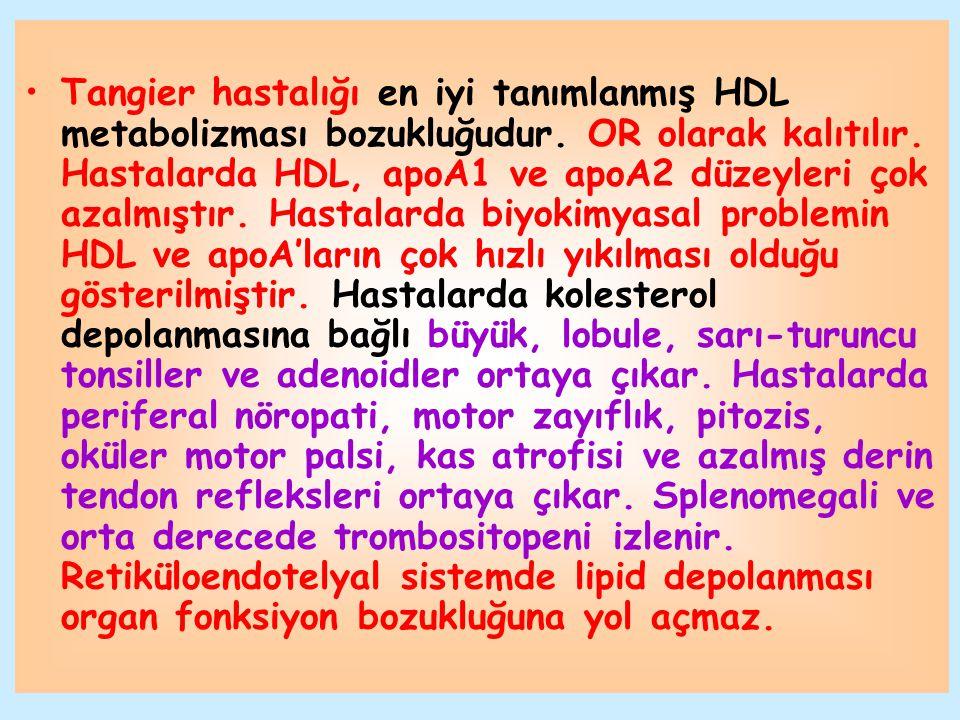 Tangier hastalığı en iyi tanımlanmış HDL metabolizması bozukluğudur