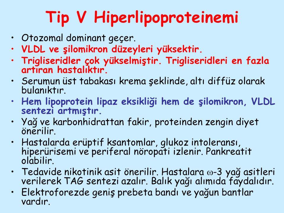 Tip V Hiperlipoproteinemi