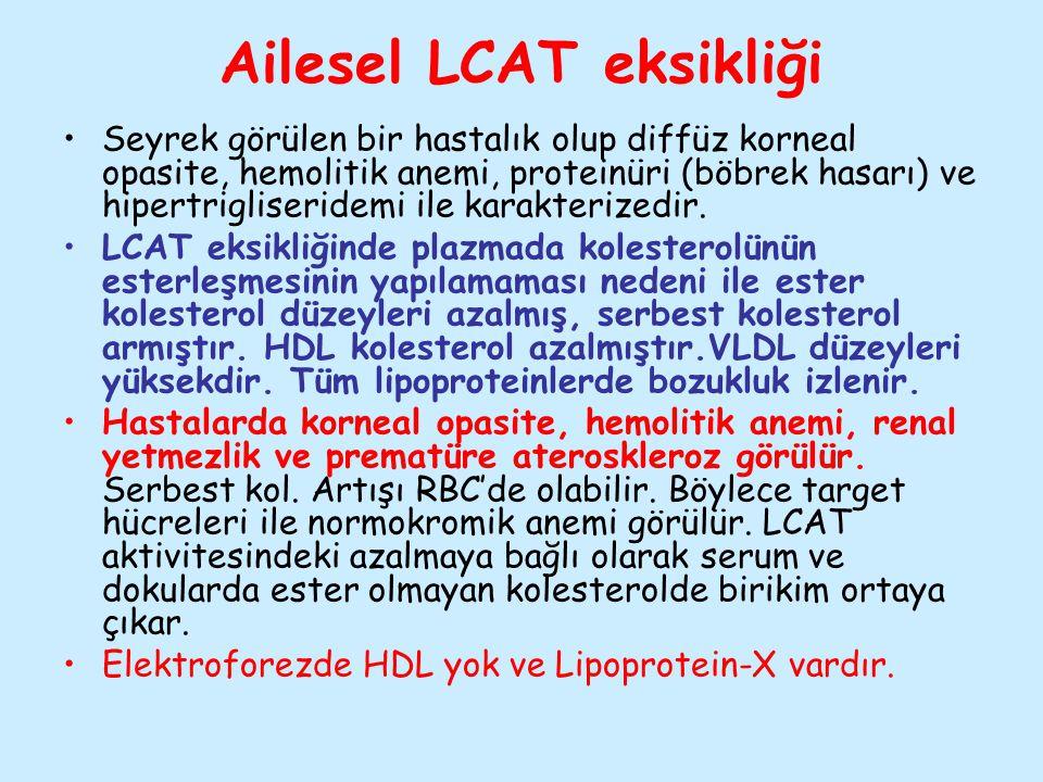 Ailesel LCAT eksikliği