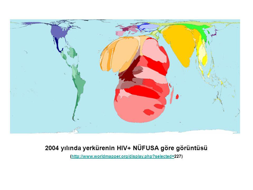 2004 yılında yerkürenin HIV+ NÜFUSA göre görüntüsü (http://www