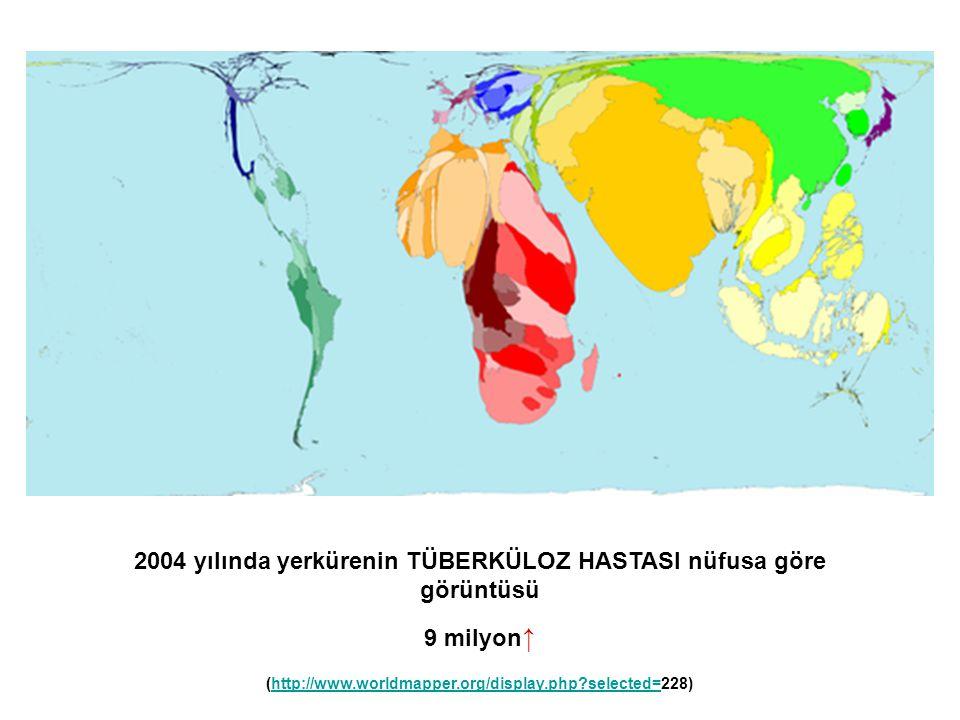 2004 yılında yerkürenin TÜBERKÜLOZ HASTASI nüfusa göre görüntüsü