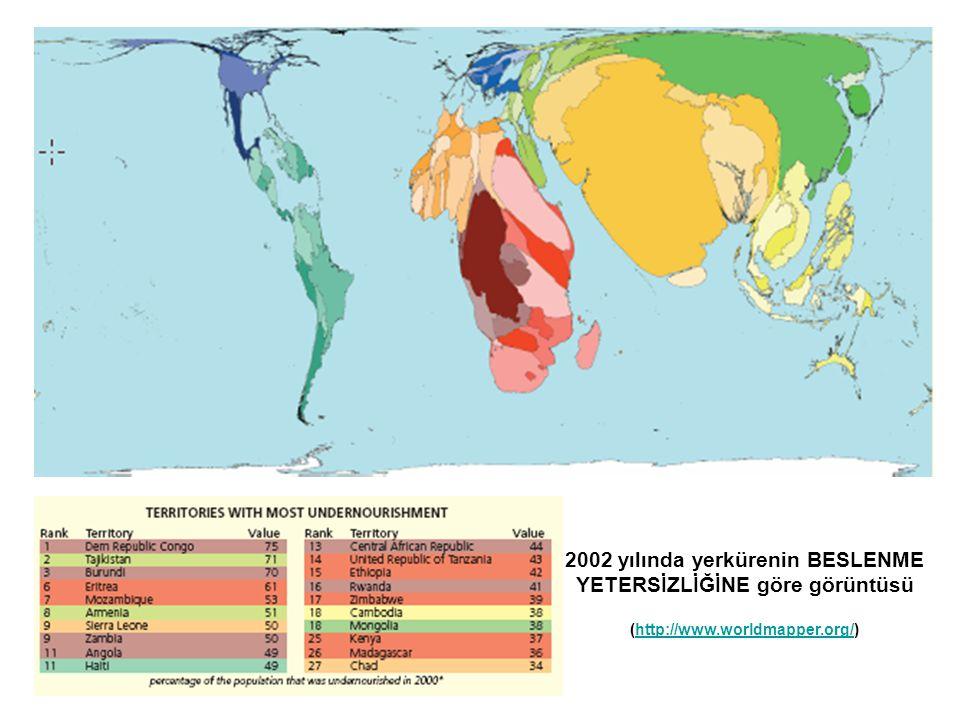 2002 yılında yerkürenin BESLENME YETERSİZLİĞİNE göre görüntüsü