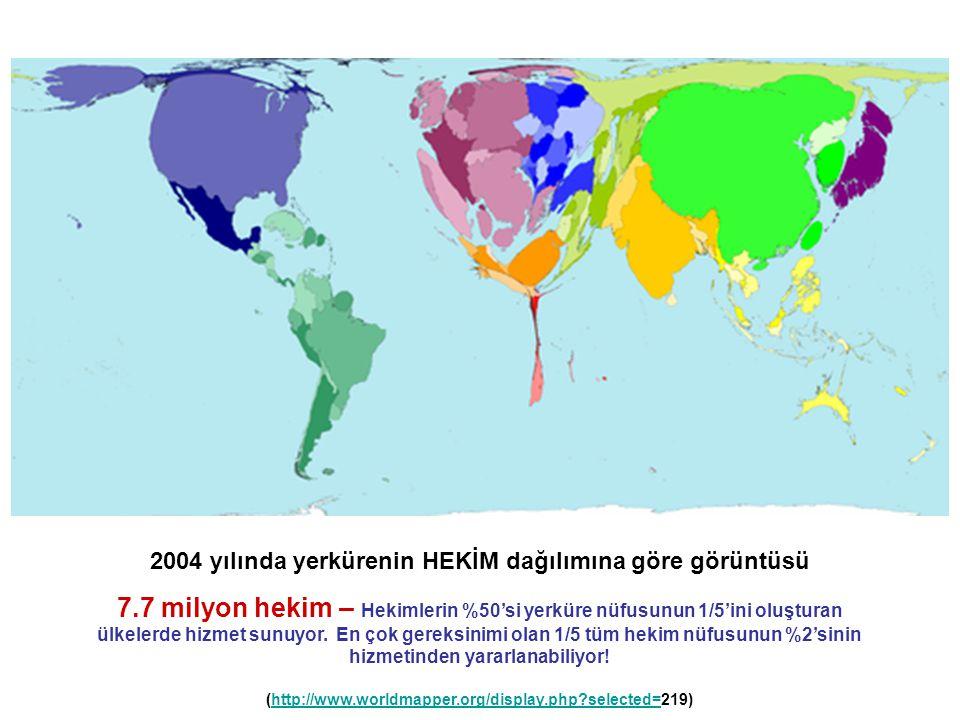 2004 yılında yerkürenin HEKİM dağılımına göre görüntüsü