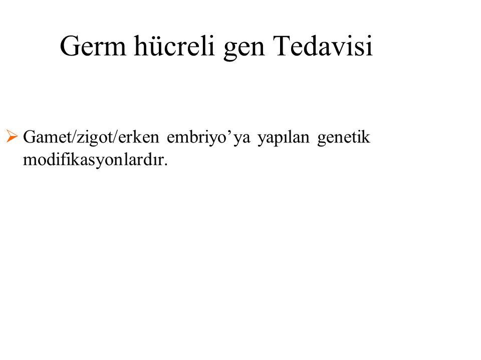 Germ hücreli gen Tedavisi