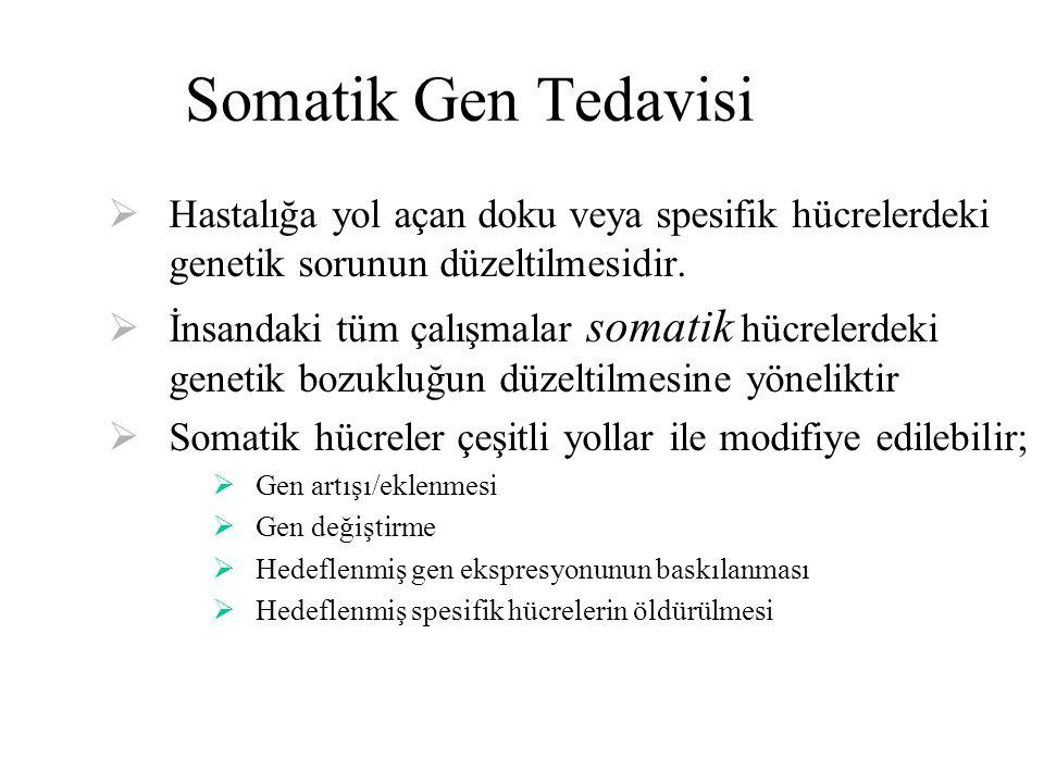 Somatik Gen Tedavisi Hastalığa yol açan doku veya spesifik hücrelerdeki genetik sorunun düzeltilmesidir.
