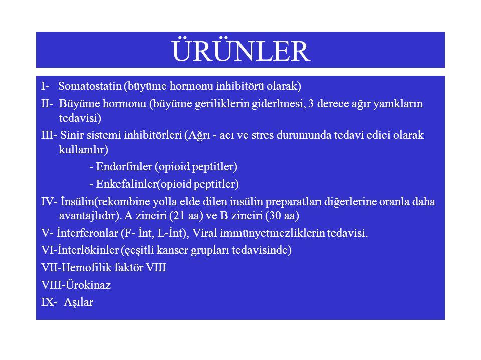 ÜRÜNLER I- Somatostatin (büyüme hormonu inhibitörü olarak)
