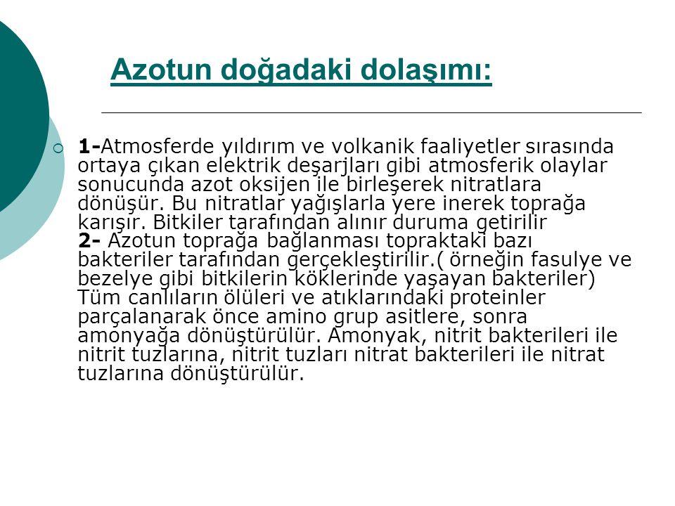Azotun doğadaki dolaşımı: