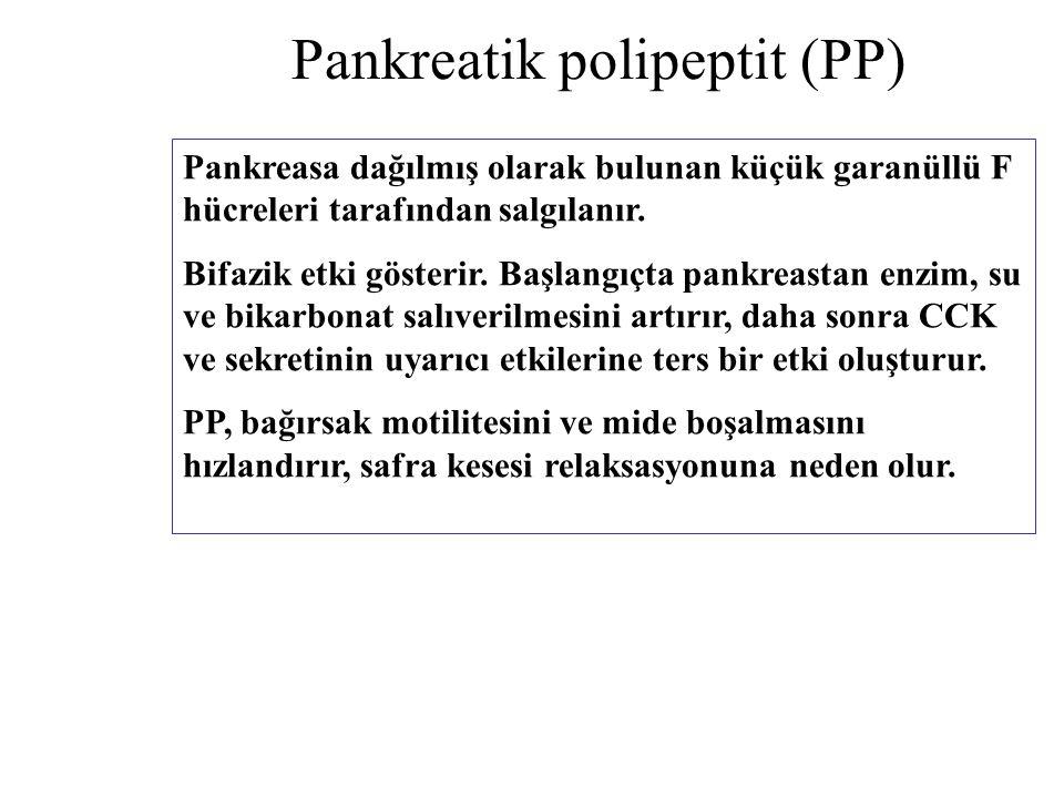 Pankreatik polipeptit (PP)