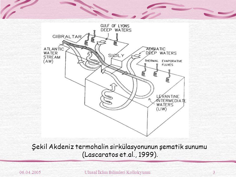 Şekil Akdeniz termohalin sirkülasyonunun şematik sunumu