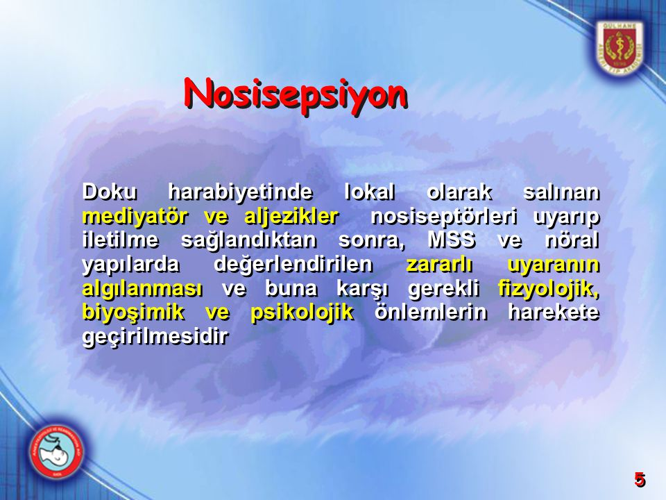 Nosisepsiyon