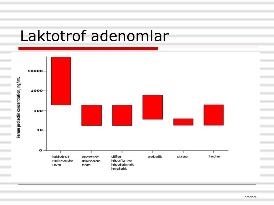 Laktotrof adenomlar uptodate