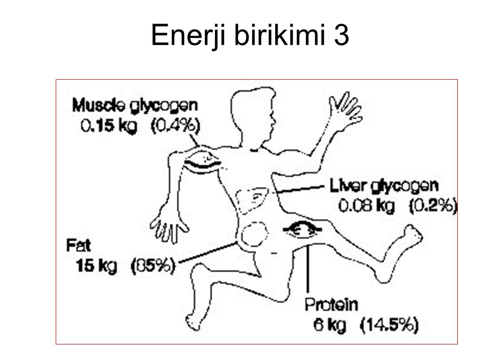 Enerji birikimi 3