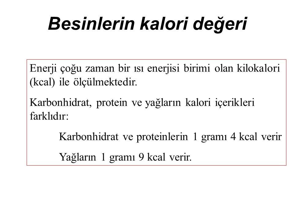 Besinlerin kalori değeri
