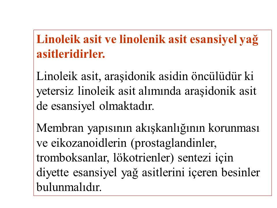 Linoleik asit ve linolenik asit esansiyel yağ asitleridirler.