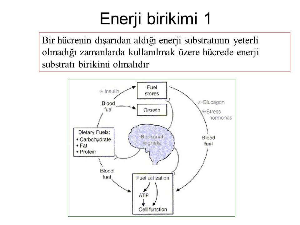 Enerji birikimi 1