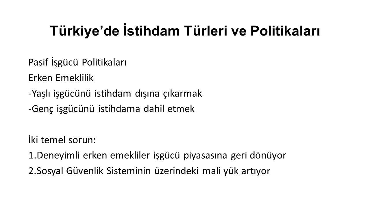 Türkiye'de İstihdam Türleri ve Politikaları