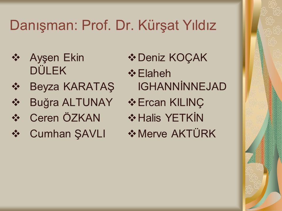Danışman: Prof. Dr. Kürşat Yıldız
