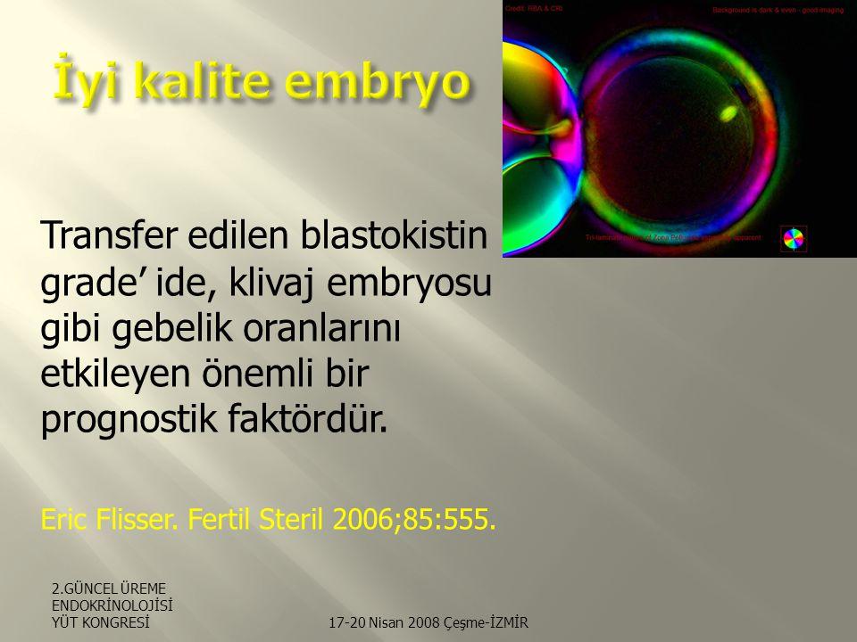 İyi kalite embryo