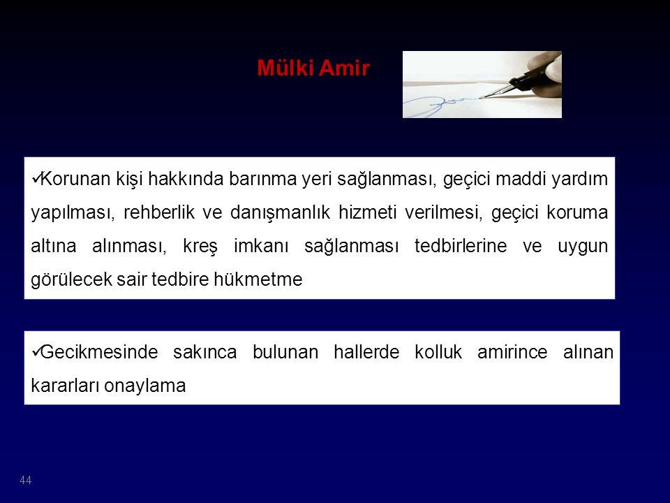 Mülki Amir