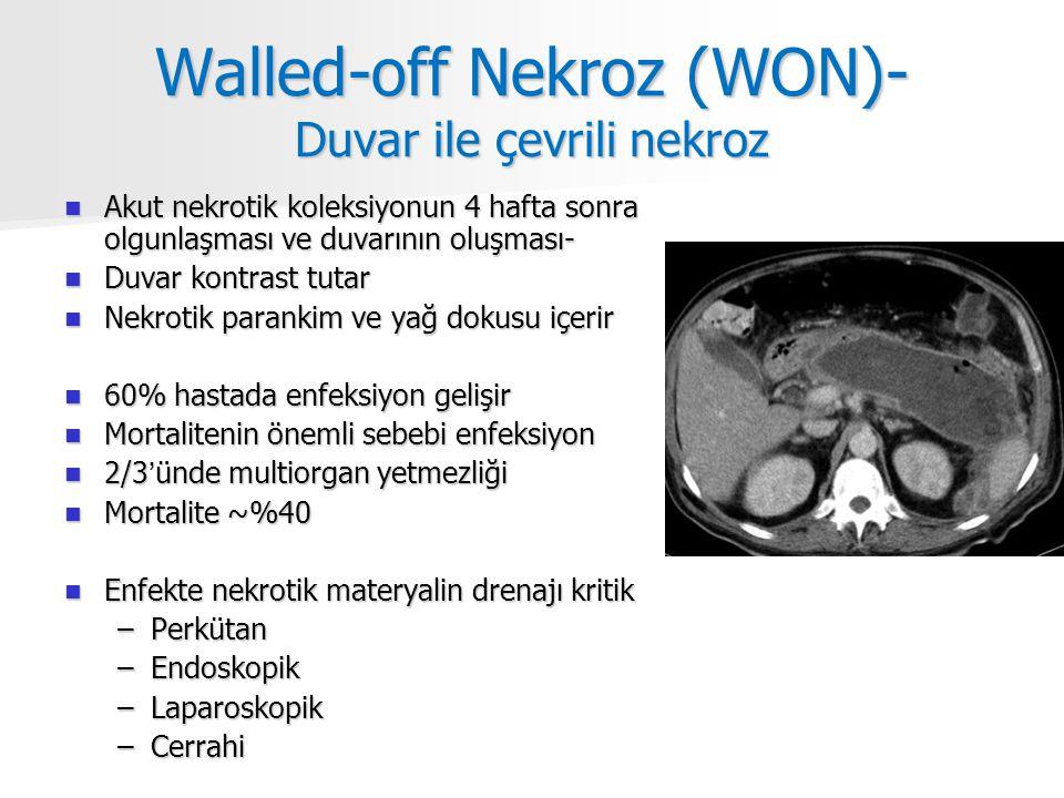 Walled-off Nekroz (WON)- Duvar ile çevrili nekroz