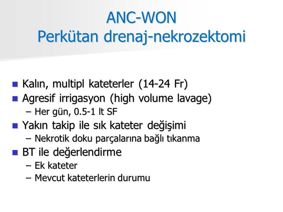 ANC-WON Perkütan drenaj-nekrozektomi