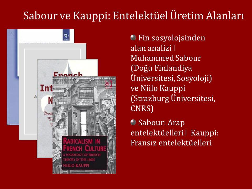 Sabour ve Kauppi: Entelektüel Üretim Alanları