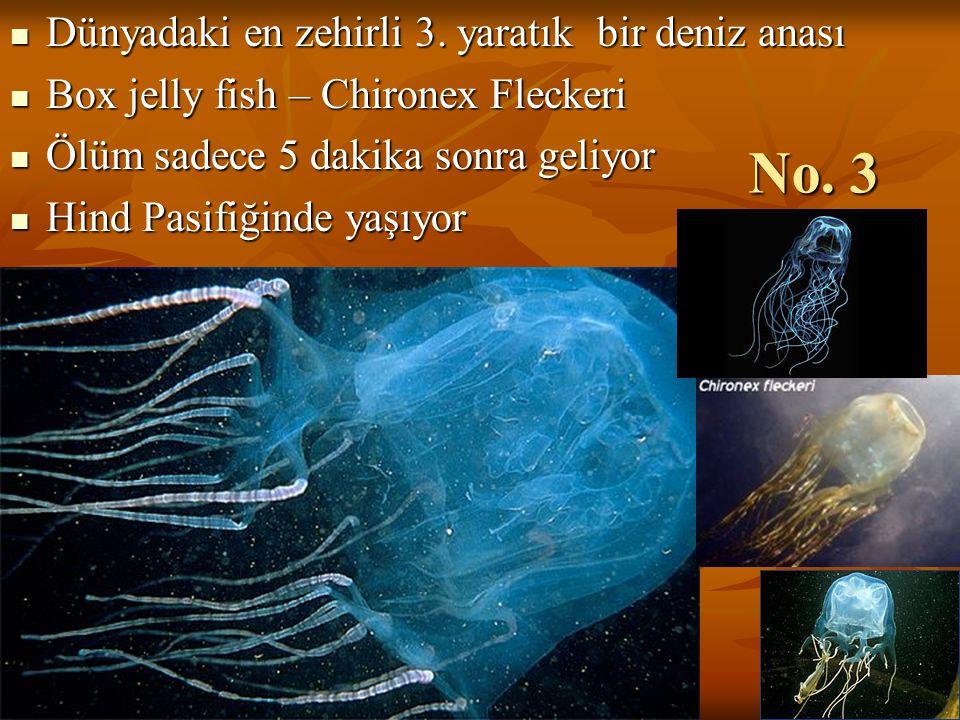 No. 3 Dünyadaki en zehirli 3. yaratık bir deniz anası
