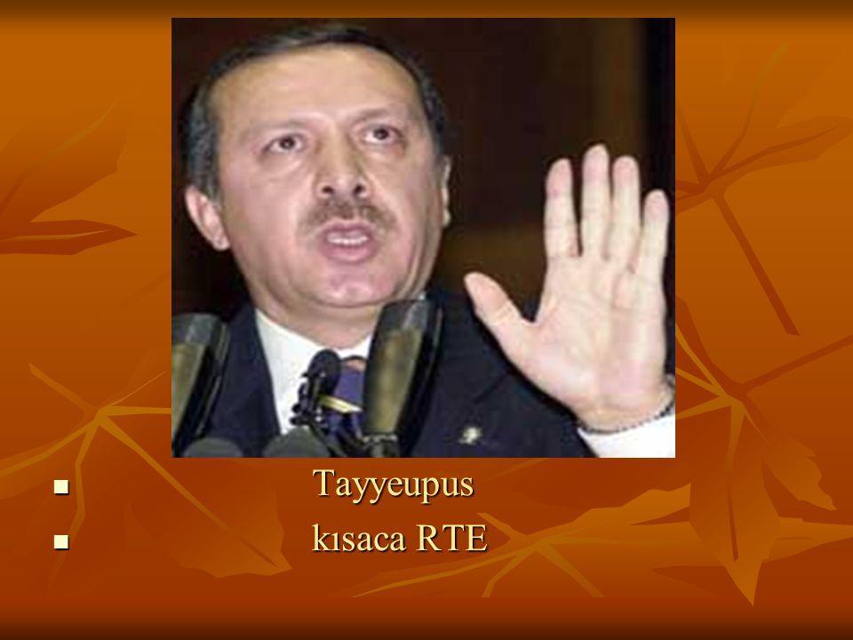 Tayyeupus kısaca RTE