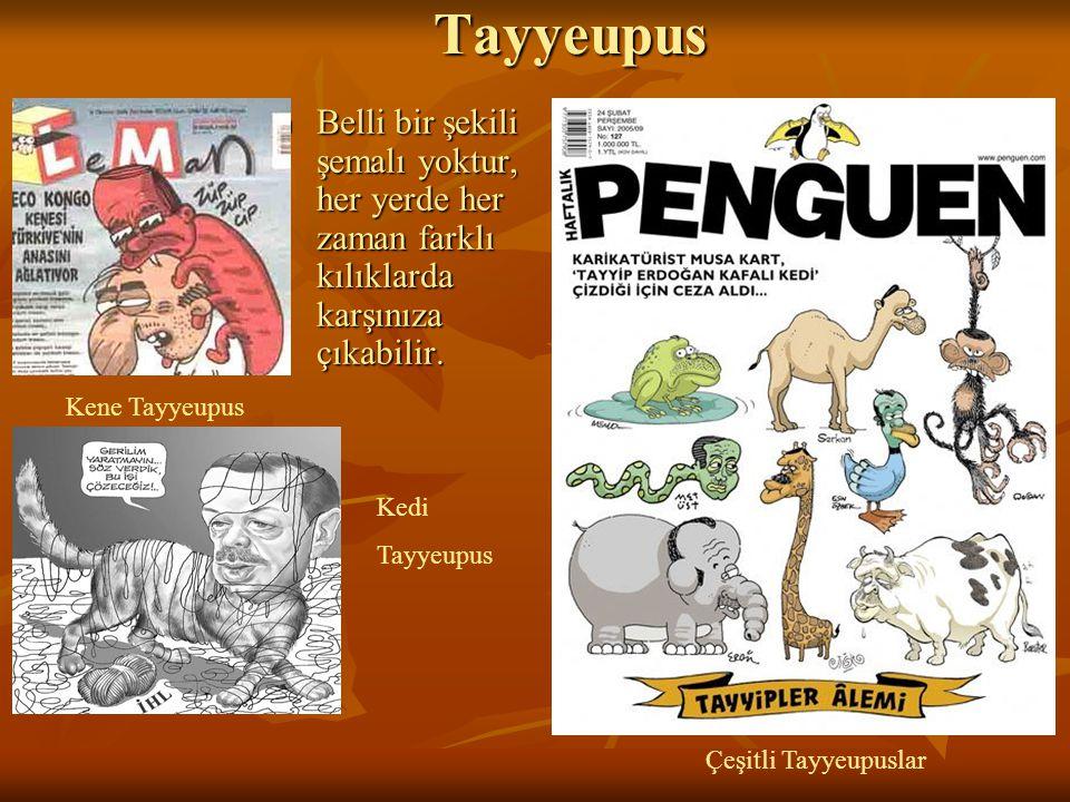 Tayyeupus Belli bir şekili şemalı yoktur, her yerde her zaman farklı kılıklarda karşınıza çıkabilir.
