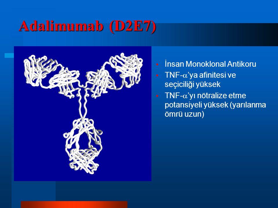 Adalimumab (D2E7) İnsan Monoklonal Antikoru