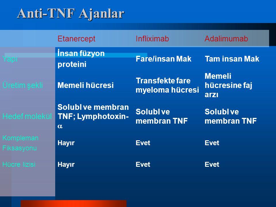 Anti-TNF Ajanlar Etanercept Infliximab Adalimumab Yapı İnsan füzyon