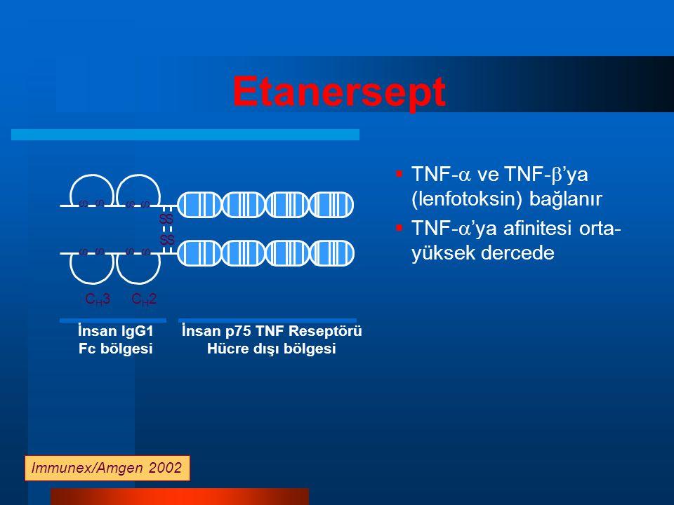 Etanersept TNF- ve TNF-'ya (lenfotoksin) bağlanır