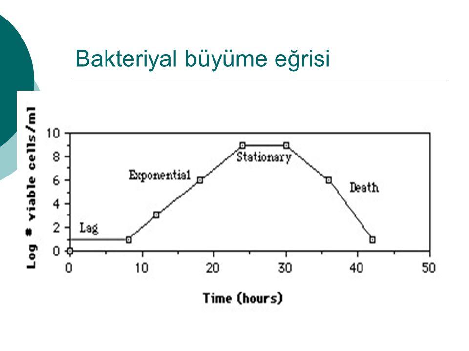 Bakteriyal büyüme eğrisi
